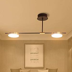 Gold Pendant Lamp 2 Light Modern Ceiling Light Fixture Kitchen Island Decorative Light 20W LED Indoor Pendant Lighting for Dinning Room Bedroom Kitchen Office Lighting Room