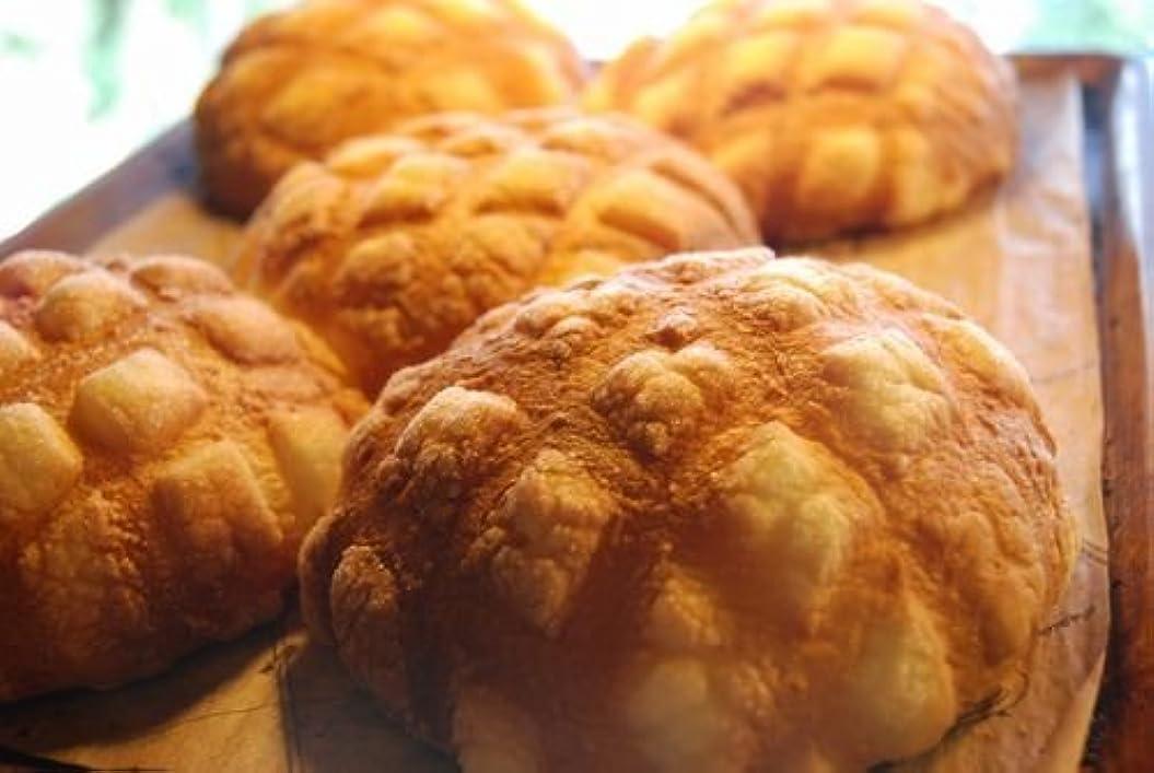 固める先住民より良い冷凍パン生地 メロンパン(10ヶ)