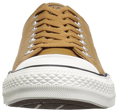 Adulte burnt Caramel Basses burnt Multicolore Mixte Ox Sneakers Converse Ctas Caramel Chuck 241 Taylor wcqXB70P