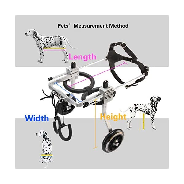 2-Wheel Pet Dog Wheelchair Fully Adjustable Rear Wheelchairs for Handicapped Hind Legs Dogs – 3 Size (Size : M) Click on image for further info. 2