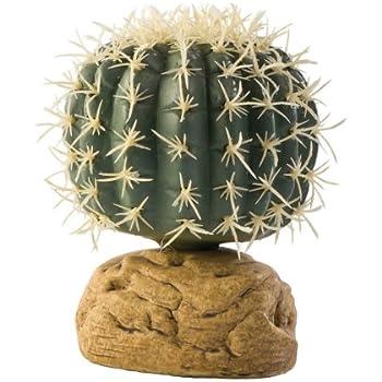 Amazon Com Exo Terra Barrel Cactus Terrarium Plant Small Pet
