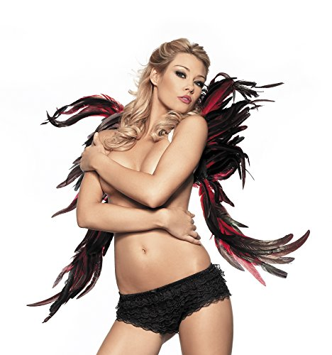 [Black & Red Fallen Angel Feather Wings Party Halloween Costume Accessory] (Swan Halloween Costumes)