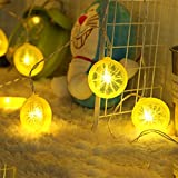 Novelty Lemon Fairy String Lights with 20 LED, Battery Operated Warm White Twinkle christmas String Lighting for Wedding ,Party,Festival,Home Decoration 13ft/4m (Provide two extra lemon slices)