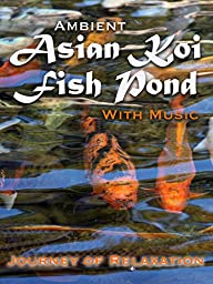 Ambient Asian Koi Pond - Journey of Relaxation