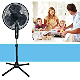 pedestal fan holmes - Oscillating Pedestal 16-Inch Stand Fan Quiet Adjustable 3 Speed, Black