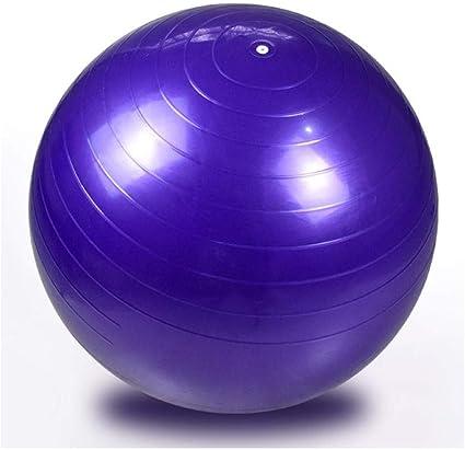 Pelota Suiza Gym Ball 65CM Fitness Pelota de Ejercicio - Bola ...