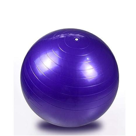 Pelota Suiza Gym Ball 65CM Fitness Pelota de Ejercicio ...