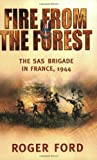 Fire from the Forest, Roger Ford, 0304363367
