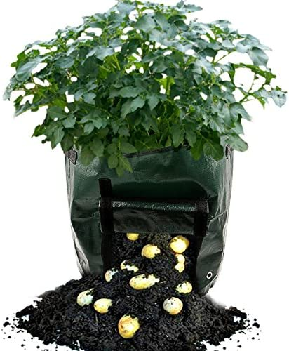 Plant Bag Planting Grow Bags Potato Growing Bags Garden 7 Gallon Grow Bags Potato Vegetable Grow Planter Bag with Handles 2-pack By KPAO Green