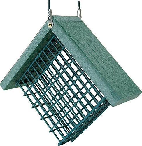 Audubon NAGGSUET Going Green Suet Feeder ()
