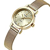 WWOOR New Women Watches Quartz-watch Relojes Mujer coupons for Classic Retro Stainless Straps WR0011