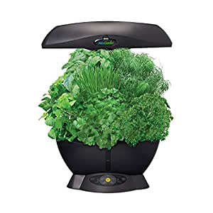 Miracle gro aerogarden 6 pod indoor garden with gourmet for Indoor gardening amazon