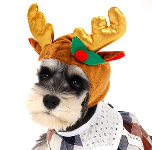 [Winter Christmas Hats Antlers Headband for Dog Pet (M)] (Dog Grinch Costumes)