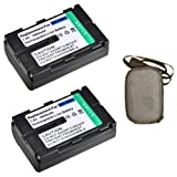 ValuePack (2 Count): Extended Life Replacement Digital Camera and Camcorder Battery for JVC BN-V607, BN-V607U, GR: DV3, DV3U, DV5, DV5U, DV808, DVM828, GV-HT1U - Includes Hard Case Camera Bag
