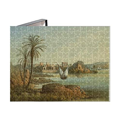 1882 Lithograph - Media Storehouse 252 Piece Puzzle of Philae Island (Egypt), by Ernst Weidenbach (1818-1882), Lithograph (18062951)