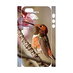 VNCASE Hummingbird Phone Case For iPhone 5,5S [Pattern-3]