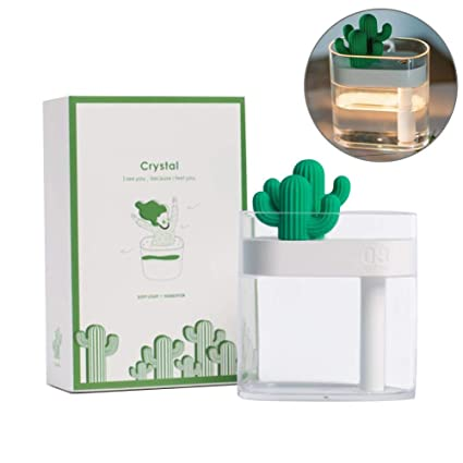 Cactus Aroma Essential Oil Diffuser Air Humidifier for Car Home Office