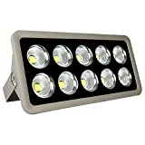 Morsen 500W COB LED Lighting Fixture 10 LED Chip Ultral Bright Outdoor Security Light For Landscape Garden Stage Court Lighting