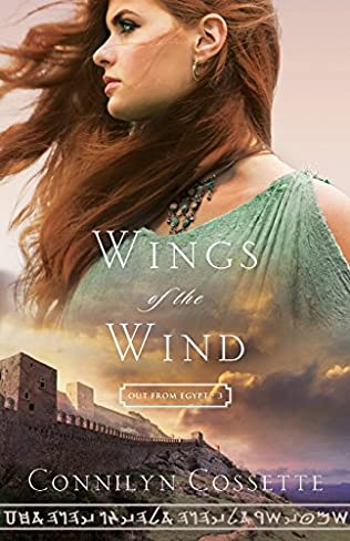 book cover of Wings of the Wind