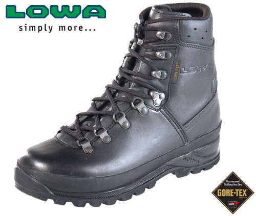 Lowa mountain boot (6.5