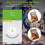 HeyMate Kalimba Thumb Piano 17 keys with Study