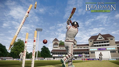 DON BRADMAN CRICKET 14 (PS4) by Tru Blu Entertainment (Image #3)