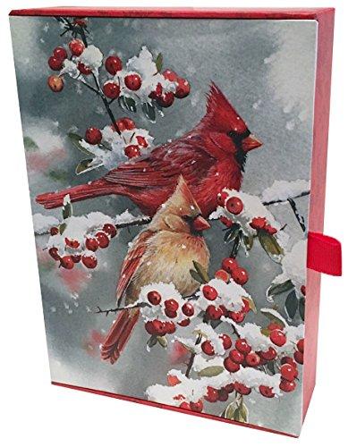 Performing Arts Keepsake Box, Full Color Inside Designs Keepsake - Birds Stationery Paper (87103-20)