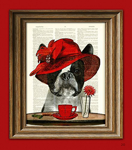 Boston Terrier Art Print Dog with fancy hat