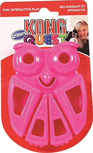 KONG Quest Critter Owl Toy, Small (Quest Kong compare prices)