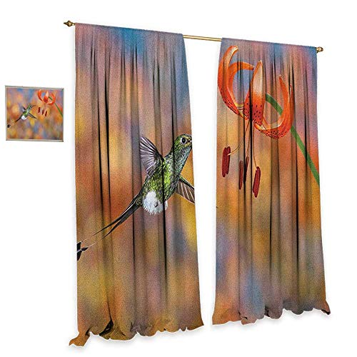 homefeel Hummingbird Room Darkening Wide Curtains The Booted Racket Tail Feeding Nectar from Tiger Lily Blur Background Photo Drapes for Living Room W108 x L84 Orange Green (Lily Tiger Drapes)