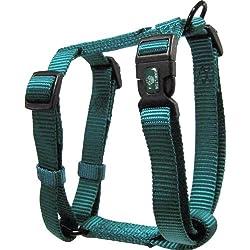 "Hamilton Adjustable Comfort Nylon Dog Harness, Teal, 3/4"" x 20-30"""