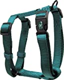 Hamilton Adjustable Comfort Nylon Dog Harness, Teal, 3/4