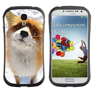 "Pulsar iFace Series Tpu silicona Carcasa Funda Case para SAMSUNG Galaxy S4 IV / i9500 / i9515 / i9505G / SGH-i337 , Arctic Fox lindo Nieve Naranja Goofy Animal"""