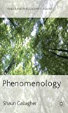 Phenomenology, Gallagher, Shaun, 0230272487