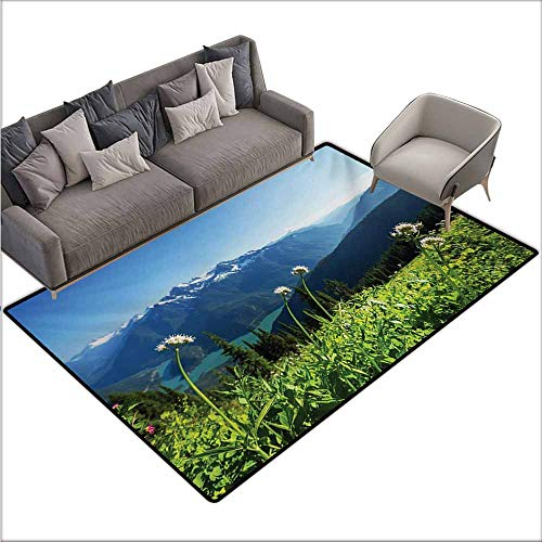 (Floor Rug Pattern Nature Diablo Lake Washington Mountains Dandelions Thistle Flowers Wilderness Image Suitable for Outdoor and Indoor use W70 xL110 Green Sky)