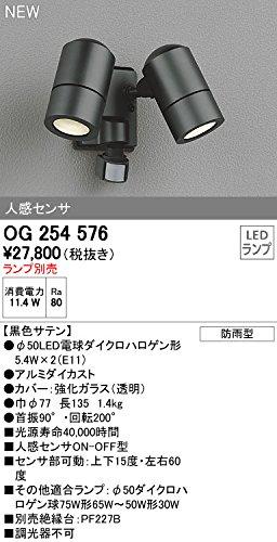 オーデリック エクステリアライト 【OG 254 576】【OG254576】 B012FJIJX8 12385