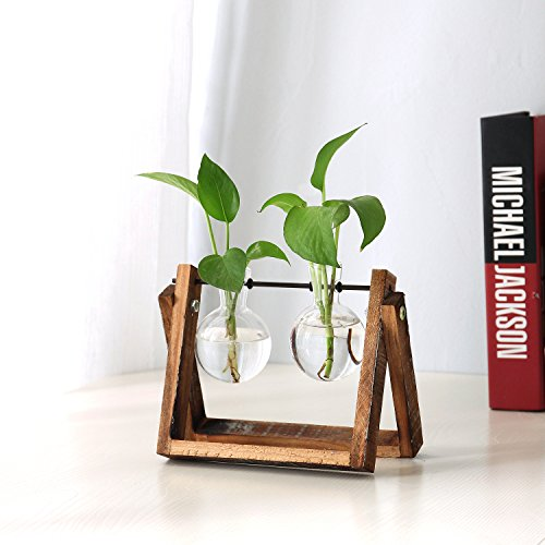 Clear Glass Planter Bulb Vases with Rustic Wood & Metal Swivel Holder Stand, Decorative Plant Terrarium by MyGift (Image #1)