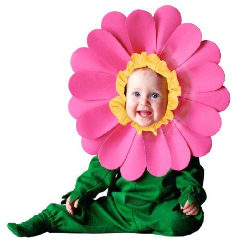 [Tom Arma Flower Web 18-24month] (Tom Arma Flower Costume)