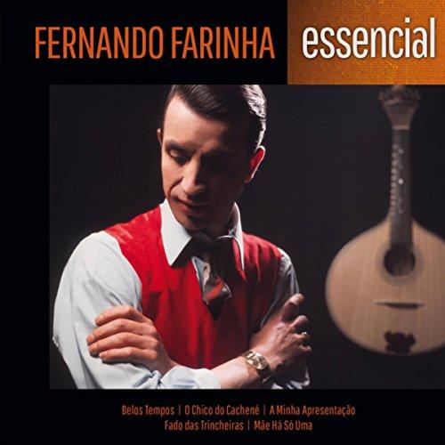fernando farinha buyer's guide for 2019