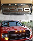 #8: 09-14 F150 Raptor Grille with Letters (Paramount 41-0158) Fit for F150 09-14