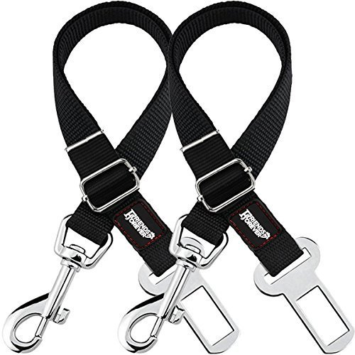 (Friends Forever 2-Pack, Adjustable Black Nylon Dog Cat Car Seat-Belt, Vehicle Tether, Restraint Lead for Pets)