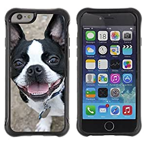 LASTONE PHONE CASE / Suave Silicona Caso Carcasa de Caucho Funda para Apple Iphone 6 PLUS 5.5 / Boston Terrier Bull French Bulldog Canine
