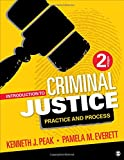 img - for Introduction to Criminal Justice: Practice and Process book / textbook / text book
