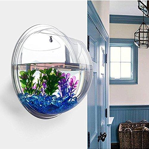 Sotoboo - Macetero de pared para colgar - hecho de acrílico transparente - ideal como jarrón
