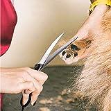 """TIJERAS 8.0""""Professional Dog Grooming Scissors"""