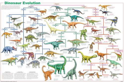 Feenixx Publishing Dinosaur Evolution Poster 24x36