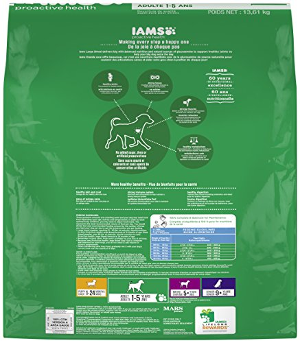 IAMS-PROACTIVE-HEALTH-Large-Breed-Adult-Dry-Dog-Food-30-Pounds
