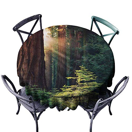Ficldxc Dust-Proof Tablecloth National Parks Morning Sunlight in Wilderness Yosemite Sierra Nevada United States Nature Green Brown Table Decoration D43