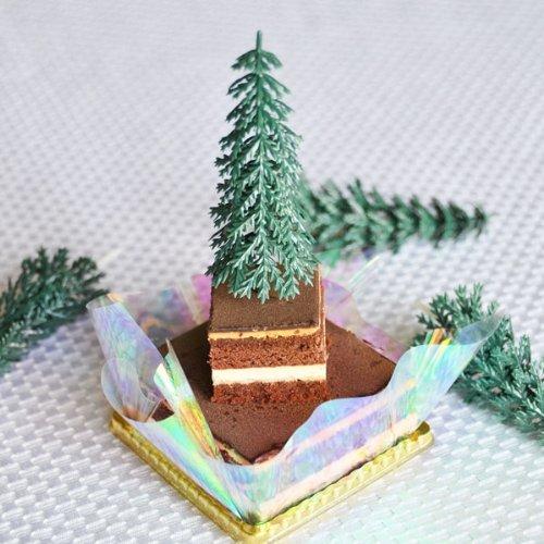 Pine Cakes - 1