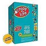 Enjoy Life Seed & Fruit Mix, Soy Free, Nut Free, Gluten Free, Dairy Free, Non GMO, Vegan, Mountain Mambo, 46 Gram Bags (Pack of 48)